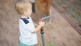 Cute adorable caucasian blond toddler boy having fun helping parents watering garden and lawn with hose and sprinkler at. House backyard stock video