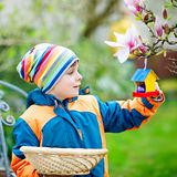 Cute adorable little kid boy making an egg hunt on Easter. Happy child searching and finding colorful eggs in domestic. Garden. Boy in spring clothes on cold royalty free stock photography