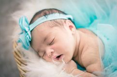Cute and adorable newborn baby with costume sleeping Stock Image