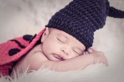 Cute and adorable newborn baby with costume sleeping Stock Images