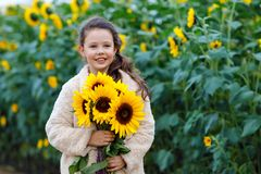 Cute adorable school girl on sunflower field with yellow flowers. Beautiful preschool child with blond hairs. Happy. Healthy little daughter, smiling and stock image