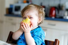 Cute adorable toddler girl eating fresh pear . Hungry happy baby child of one year holding fruit. Girl in domestic kitchen, having healthy meal snack. Smiling Royalty Free Stock Images