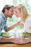 Cute affectionate couple having a meal together Stock Photography