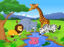 Cute African safari animal cartoon characters scene Stock Images