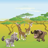 Cute African safari animal cartoon scene Stock Photos