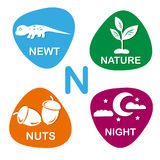 Cute alphabet in vector. N letter for newt, nature, nuts and night. Alphabet design in a colorful style Stock Photo
