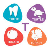 Cute alphabet in vector. T letter for Tooth, Turtle, Tomato and Turkey. Alphabet design in a colorful style Stock Photos