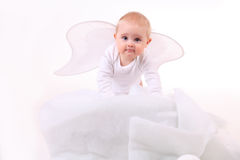 Cute Angel Baby Stock Image