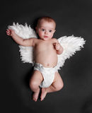 Cute angel baby boy. Portrait of a cute baby boy wearing fake angel wings, black background Stock Photos