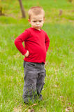 Cute angry little boy standing on the meadow. Cute angry little boy standing in the middle of the meadow on beautiful spring day stock photo