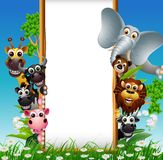 Cute animal cartoon with blank sign and tropical plant