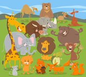 Cute animal characters group Stock Image
