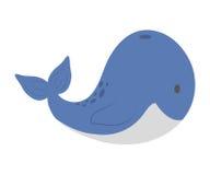 Cute animal design. Whale icon. vector graphic Stock Photos