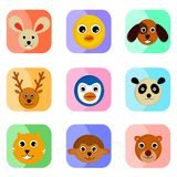 Cute animal face Stock Images