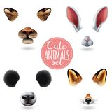 Cute Animal Faces Icon Set. Isolated cute animal faces icon set with four different cartoon muzzles on white background vector illustration Stock Image