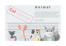 Cute animal family background with Cats Royalty Free Stock Photo