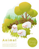 Cute animal family background with Sheep Royalty Free Stock Photos