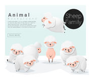 Cute animal family background with Sheep Stock Photography