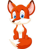 Cute animal fox posing Stock Photos