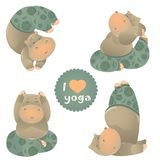 Cute animal illustration of yoga pose Royalty Free Stock Photography