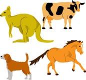 Cute animal set 2 Stock Image