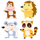cute animal set Stock Images