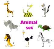 Cute animal set Royalty Free Stock Photo