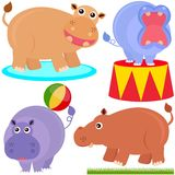 Cute Animal Vector Icons : hippopotamus (hippo) Royalty Free Stock Photos