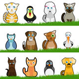 Cute Animals Royalty Free Stock Photos