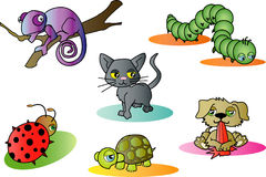 Cute animals stock illustration