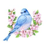 Cute little blue bird in bloom. Watercolor illustration. Cute animals and birds. Spring symbol. Happy Easter. Blue luck bird Royalty Free Stock Images