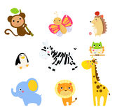 Cute animals collection Stock Images