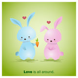 Cute Animals Collection Love is all around 2 Stock Photo