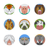 Cute animals emotions icons isolated fun set face happy character emoji comic adorable pet and expression smile Stock Photos