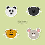 Cute animals Faces Royalty Free Stock Image
