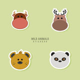 Cute animals Faces Royalty Free Stock Photo