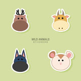 Cute animals Faces Royalty Free Stock Photos