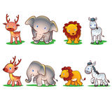 Cute animals. Front and side standing walking Stock Photo