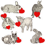 Cute animals holding red hearts. Happy Valentines day. Collection with cute animals holding red hearts. Happy Valentines day Stock Images