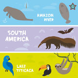 Cute animals set anteater manatee sea cow sloth toucan bat Hyacinth macaw, kids background, South America animals Lake Titicaca, A. Mazon River bright colorful Royalty Free Stock Photo