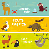 Cute animals set. Anteater manatee sea cow sloth Hyacinth macaw guanaco lama marmoset monkey armadillo Blue-footed booby, kids background, South America Stock Image