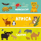 Cute animals set, leopard turtle crab penguin lemur bull hippo hyena parrot tsetse fly crab camel kids background African animals, Royalty Free Stock Photos