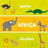Cute animals set Ostrich Fennec fox crocodile elephant zebra lion hyena giraffe, kids background African animals, Africa Sahara Ka. Lahari desert bright colorful Royalty Free Stock Photography