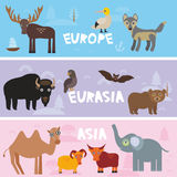 Cute animals set Parrot bison brown bear Camel sheep, cow elephant booby moose wolf bat deer, kids background Europe Asia Eurasia. Animals, bright colorful Royalty Free Stock Images