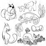Cute animals silhouette - cartoon hamster, whale, elephant, chameleon Stock Photography