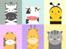 Cute animals Stock Images
