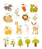 Cute animals vector set. Forest animals and african animals with trees. On white background vector illustration