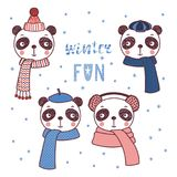 Cute animals in warm hats. Set of hand drawn cute funny portraits of pandas in different warm hats, mufflers, text Winter fun. Isolated objects on white Royalty Free Stock Image
