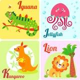 4 cute animals Stock Photos