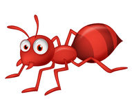Cute ant cartoon Stock Photography
